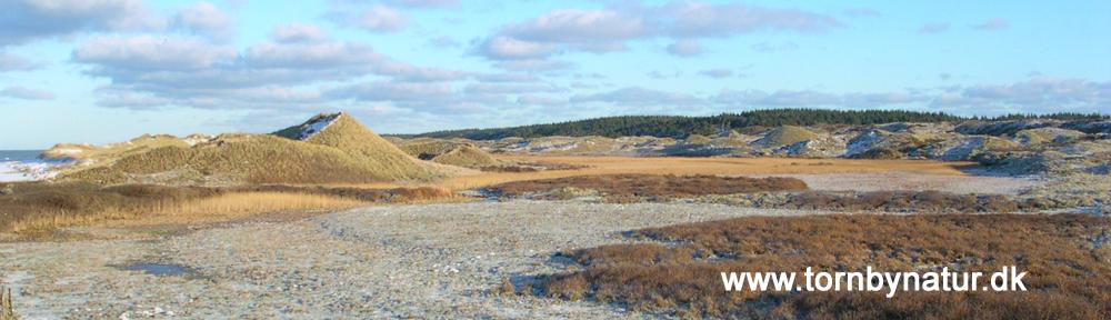 Tornby Natur