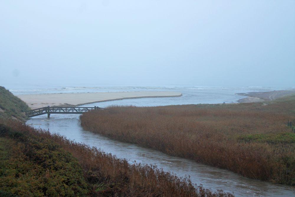 Ved udløbet har åen gravet et bredt delta på stranden.